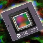 ON Semiconductor's Latest EMCCD Imager Increases NIR Image Quality with Improved Quantum Efficiency